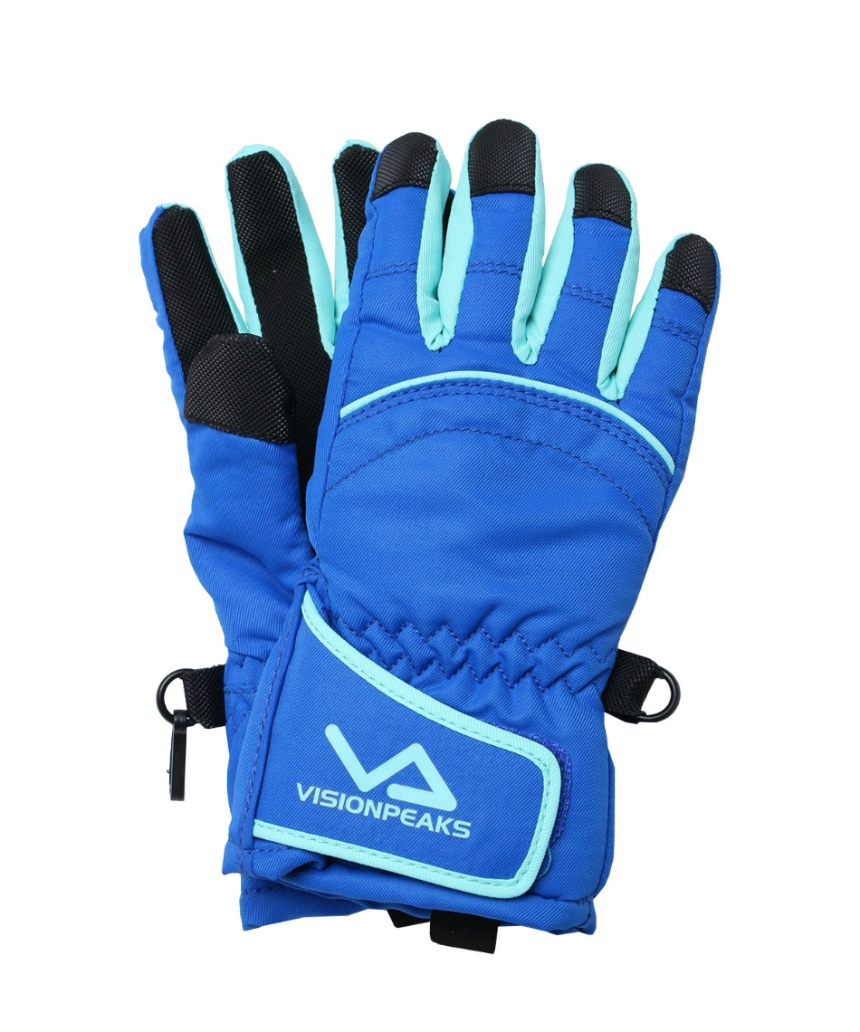 ビジョンピークス(VISIONPEAKS) 手袋 スノーグローブ 5本指 グローブ VP131701H02 キッズ 子供 90~120cm