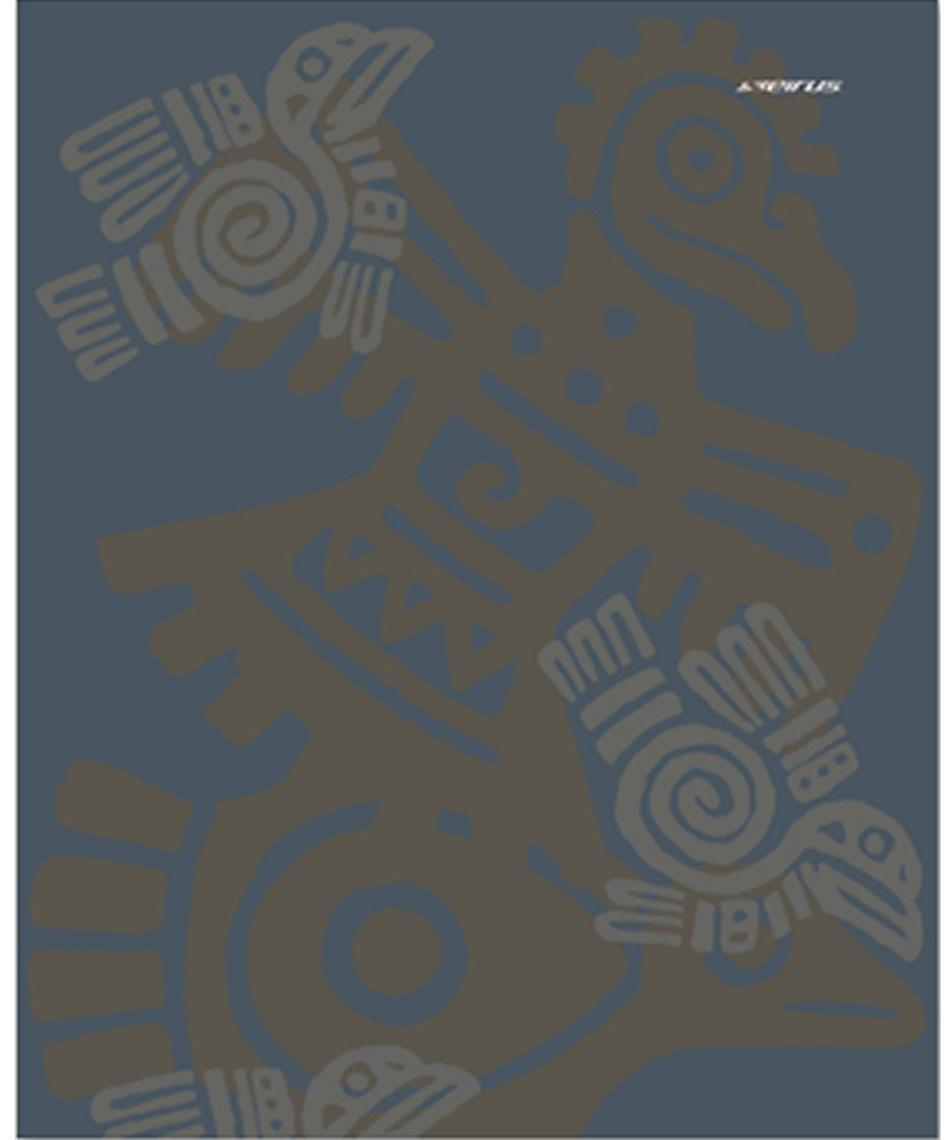 セイラス(SEIRUS) バンダナ サンシングデザイン 16010