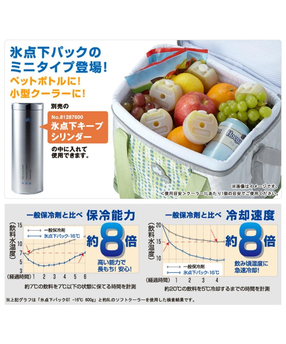 ロゴス(LOGOS) 保冷剤 氷点下パックGT-16℃ コンパクト 2pcs 81660609
