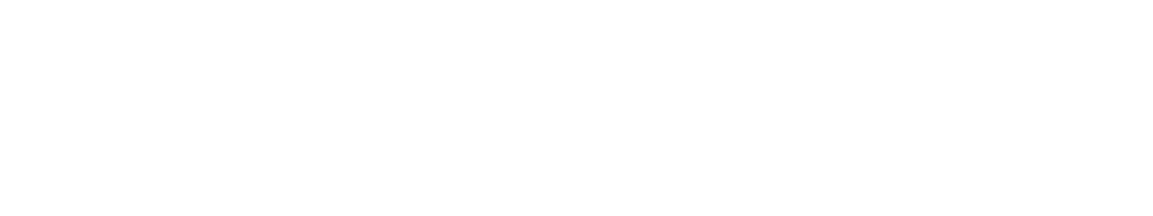 協賛企業 MIZUNO FIELDFORCE